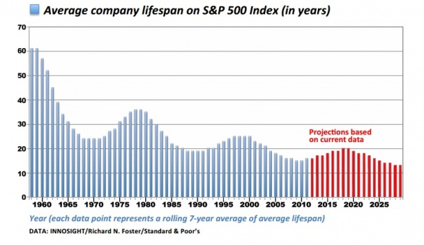 Average company lifespan S&P 500